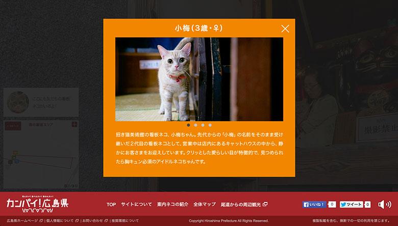 猫目線のストリートビュー開始!広島・尾道の看板ネコに癒される technology150914_catstreetview_03