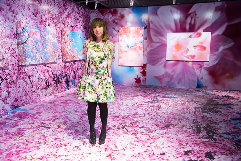 安室奈美恵や綾野剛ら作品も。蜷川実花、自身最大の個展を台湾で開催 art160323_ninamika_3