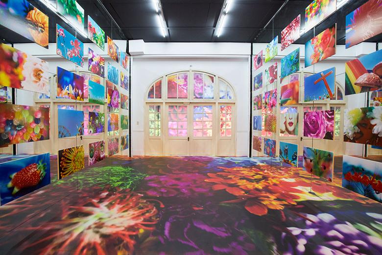 安室奈美恵や綾野剛ら作品も。蜷川実花、自身最大の個展を台湾で開催 art160323_ninamika_6