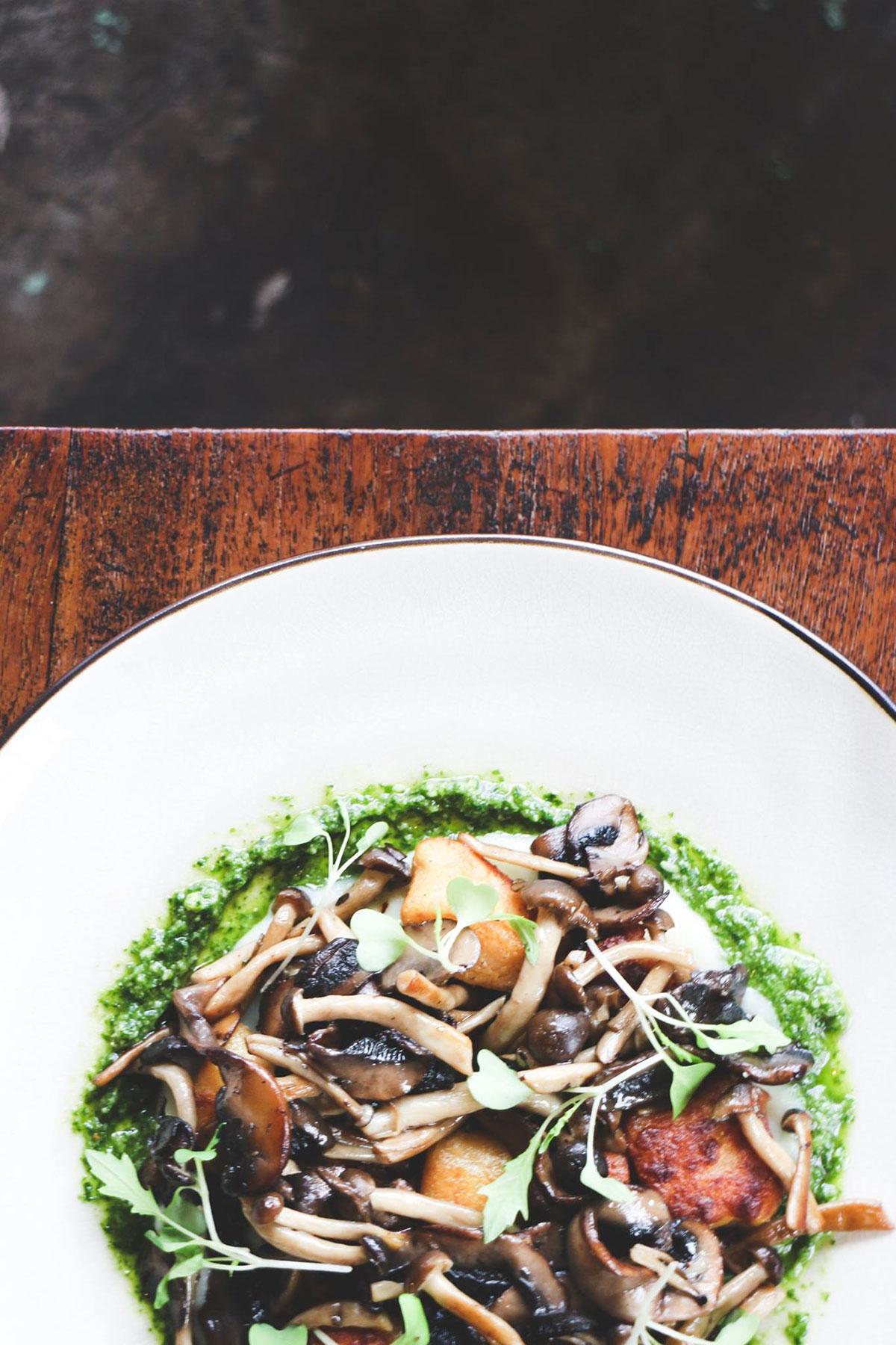 アジアン・インディー・ミュージックシーン 〜vol.1「香港」with tfvsjs and GDJYB〜 Portobello-mushroom
