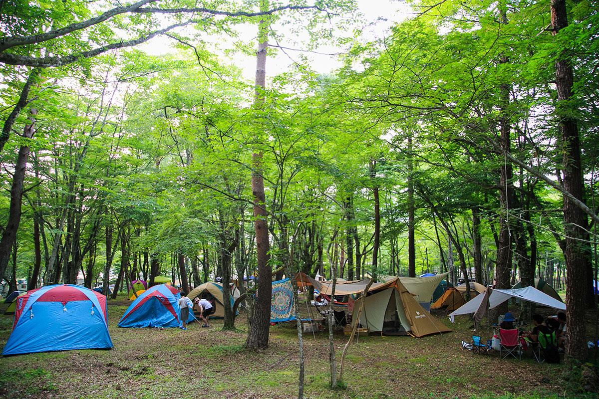 富士山麓の野外テクノフェス!第1弾にKEN ISHII、DJ SODEYAMA、DJ YOGURTら music160711_sawagi_6