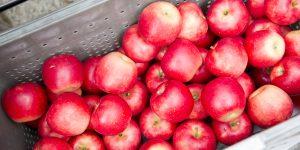 りんご音楽祭とTOKYO DESIGN WEEKってどゆこと?? Ringofes_2016_Media_select-8-300x150