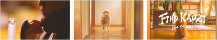 """色っぽい""""くノ一""""岸明日香が魅せるセクシーアクション&犬のかわいすぎる演技!?「柴犬vs忍者 かくれんぼ」動画公開 sub2-3-700x129"""