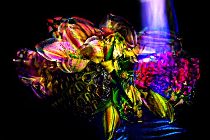 """【インタビュー】朽ちるさまを""""押し花""""で表現——フラワーアーティスト・相壁琢人の「無彩色の痛点」 interview_ahiaikabe_0I2C5952_1b-700x466"""