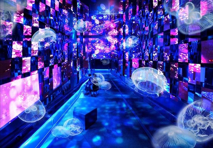ラジオ番組『Tokyo Brilliantrips』連動!『NGHTMRE IN TOKYO』、すみだ水族館、<KLASSIK underground>をご紹介! art170927_brilliantrips_2-700x488