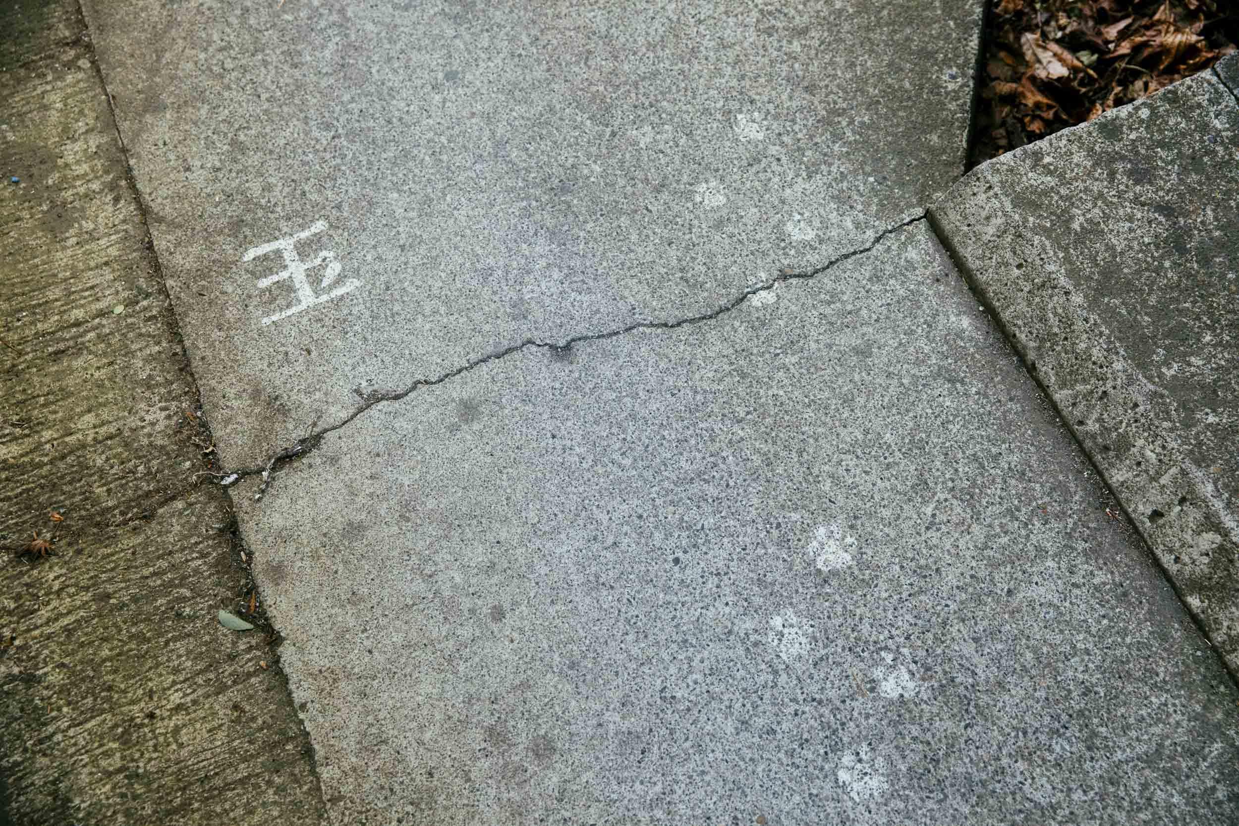【フォトルポ#1】コムアイが行く!日光市今市の歩き方。スイカン×日光市発の無料映画上映会『名画ニッコウ座』間もなく開催 180307-meiga-nikko-za-16