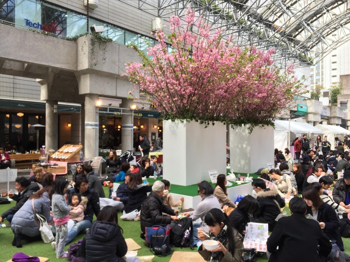 アークヒルズで<さくらまつり 2018>開催!桜のライトアップのほか、グルメ屋台やワークショップなどを楽しもう! gourmet180305_arksakura_06