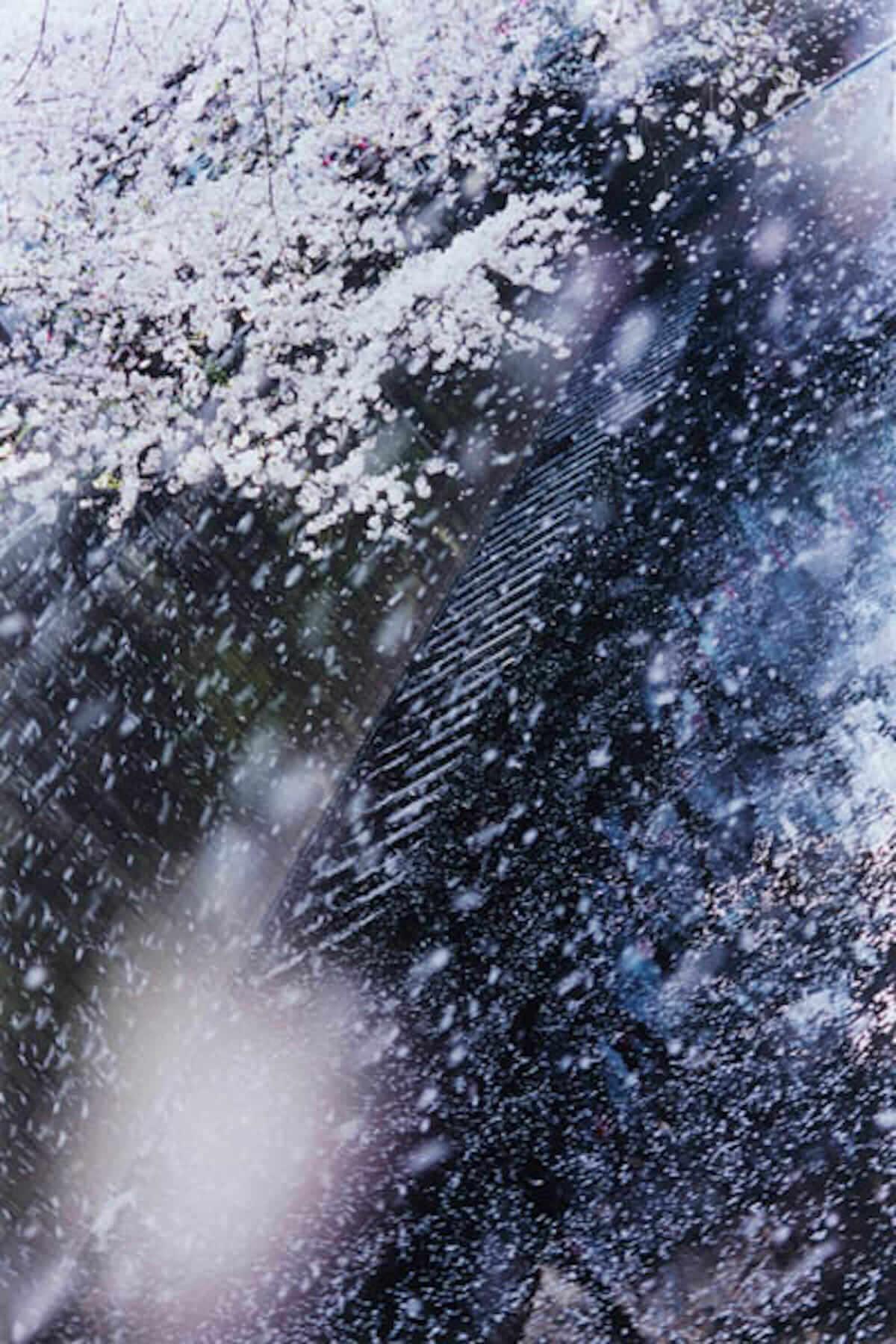 蜷川実花の本質に迫る!9つのテーマまとめた写真集『蜷川実花虚構と現実の間に』。全国各地で蜷川実花展開催! cluture180621_abu_6-1200x1800