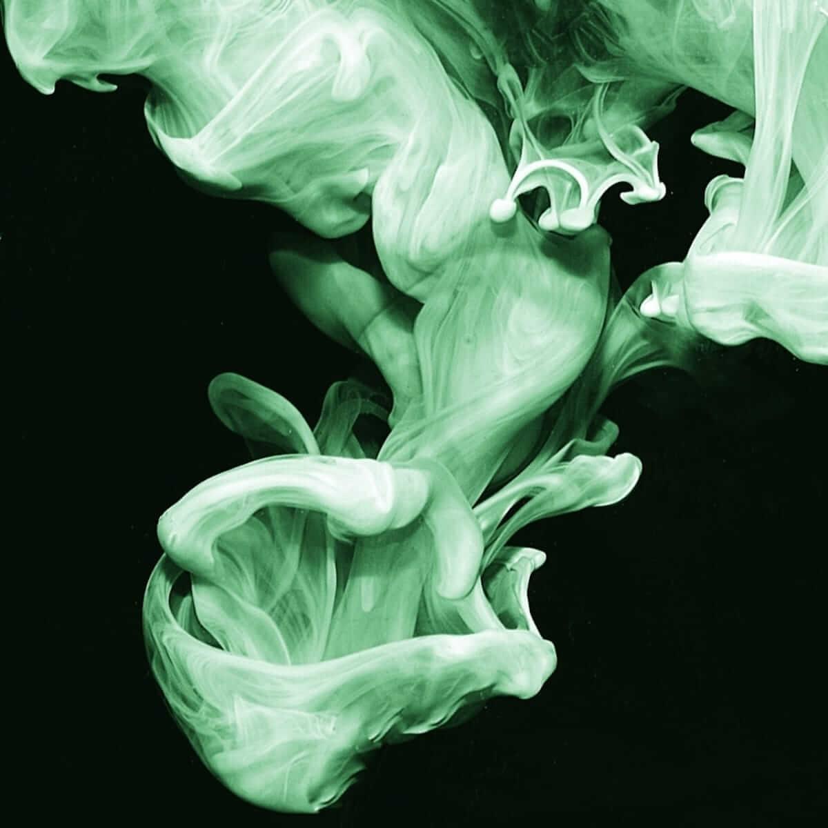 シミアン・モバイル・ディスコ、新EPリリース!ディープ・スロート・クワイアとのライブが収録! music180713_simianmobiledisco_2-1200x1200